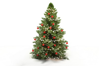 Distribution de sapins aux commerçants et illuminations de Noël